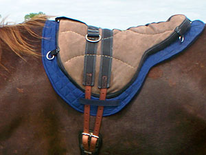 saddleblanket on horse