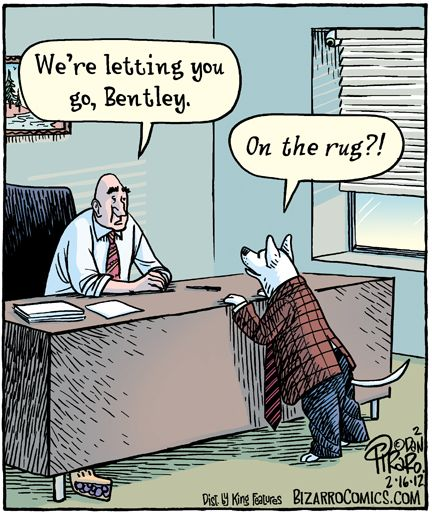 Carpet Jokes And Other Rug And Tapestry Humor. • Rugs 4: A
